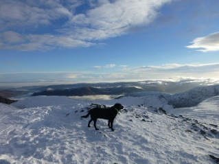 Morgan on top of Helvellyn November 2012